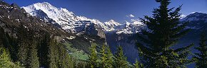 jungfrau from the gemselweg, wengen