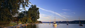 tranquil evening on zurich see