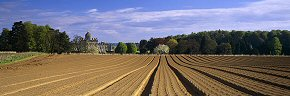 deep furrows, castle howard 2 - ym0218