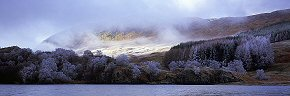 frozen trees on loch lubhair