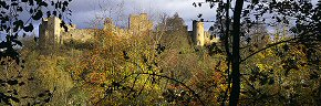 leaves and shadows, ludlow castle