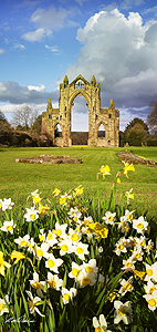 gisborough priory card