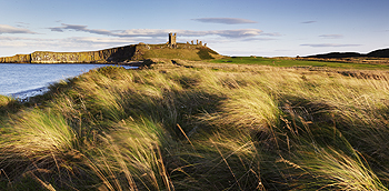 dunstanburgh castle card
