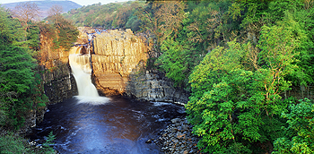 high force card