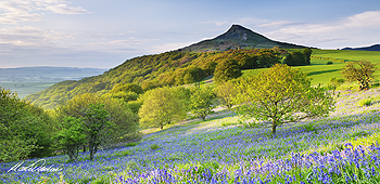roseberry topping card